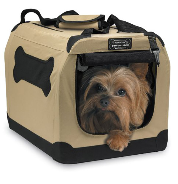 Offer Caring Carrying Privilege by a Small Pet Carrier