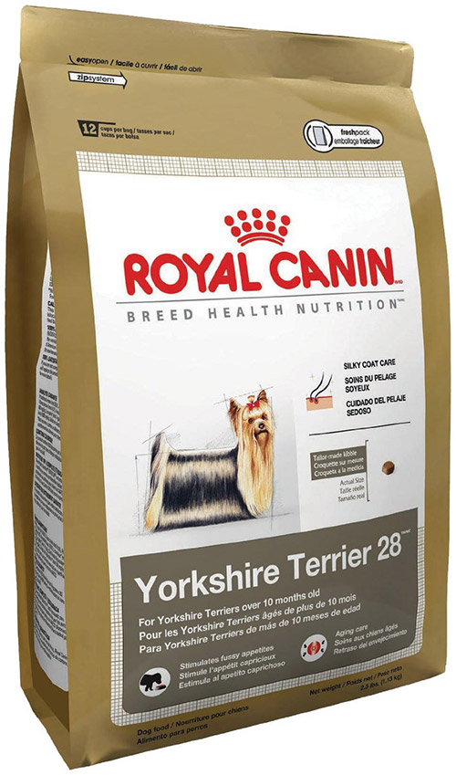 yorkshire terrier food